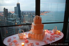 Project 366 - 2008 089/366 (CarolynSerrano) Tags: wedding chicago cake skyline candles view lakemichigan 2008 leapyear 366 photographicjournal dayeightynine project366 2008yip 089366 project366200889366