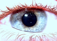 Mein Auge / My eye (00Hendrik00) Tags: blue eye blau auge