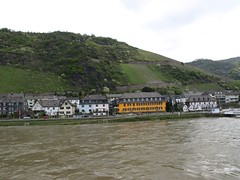 Rhine River Apr 08 032 (MurphMutt) Tags: castle germany rhineriver