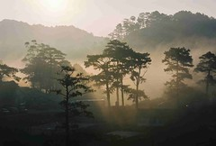Good Friday in Sagada (Sahlee C. Camposano) Tags: morning travel nature sunrise trekking canon outdoor philippines places adventure sagada canoneos mountainprovince canon30d northernphilippines canoneos30d philippinetravel sahlee sahleeccamposano sahleecamposano sahleec sahleecarino philippinetraveldestinations
