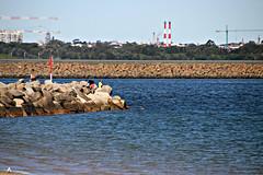 2017 Sydney: Botany Bay #27 (dominotic) Tags: sydney nsw australia newsouthwales 2017 portbotany botanybay water beach brightonlesands sydneyairport ladyrobinsonsbeach rockfishermen