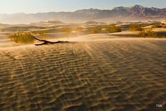 Sand storm in the dunes (doveoggi) Tags: california sunset sanddunes deathvalleynp 6710 the4elements photocontesttnc11 californiatnc11