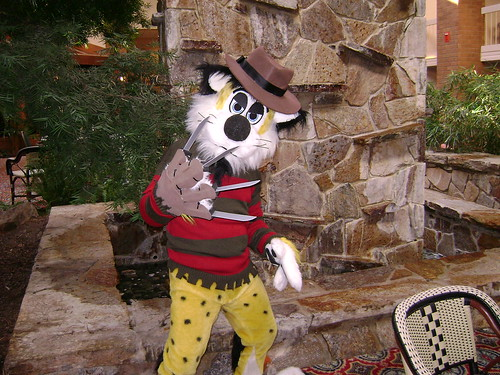 Freddy Krueger cheetah