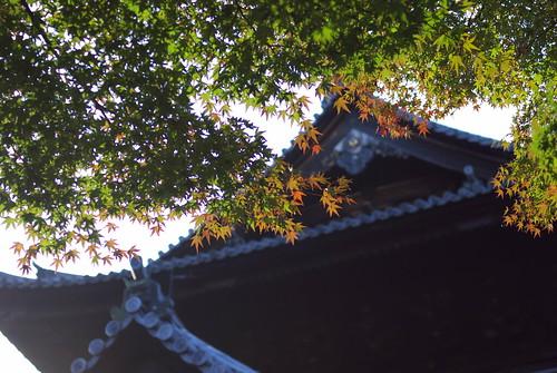 Nanzenji temple (南禅寺)