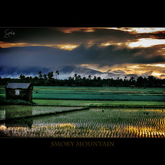 Smoky Mountain (Soul101) Tags: trees houses sunset mountain reflection nature field fog clouds landscape philippines farmer smoky agriculture ricefield planting mywinners nikond40 superbmasterpiece soul101 camsnorte