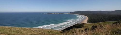 Great coastal scenery along the Catlins...South Island, NZ.
