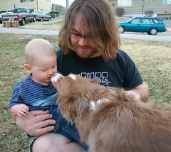 Dog Kisses (the industry slut) Tags: family boy dog baby cute daddy outside kid infant dad child sydney rod syd dogkiss doggykiss miniatureaustralianshepherd