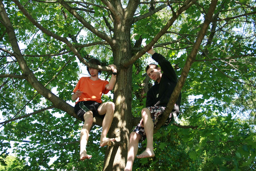 Klemens and Joe in tha tree