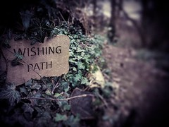 The Wishing Path (aapfarrington) Tags: nature natural woods leavss leaf ivy sign wishing path wish walk
