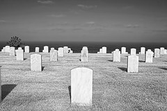 MDFP-40 (ASHCROFT54) Tags: california cemetery photoshop canon sandiego sigma boyscouts patriotic event burial tradition girlscouts memorialday lightroom pointloma 1882 2470mm fortrosecransnationalcemetery americantradition 40d militarygraveyard payingourrespects topazdenoise flagplanting