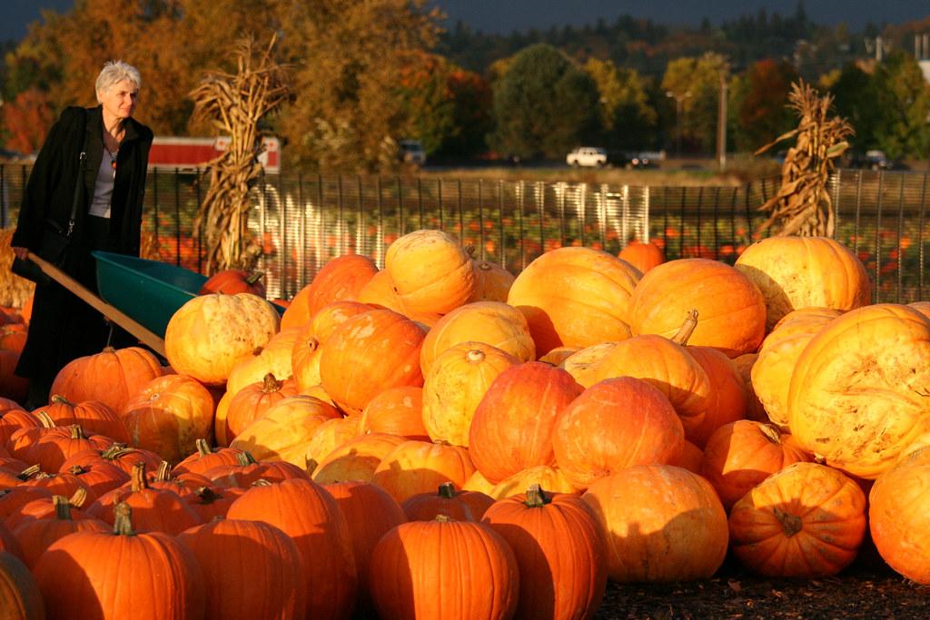 Pickin A Pumpkin