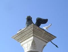 Vola via il gabbiano (magellano) Tags: venice italy sculpture statue italia seagull capital lion ali volo venecia venezia leone statua venedig italie gabbiano sanmarco scultura capitello serenissima leonealato whings