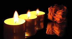 Candles and dried rose (CELIA.....) Tags: life macro reflection closeup mirror still candles nightshot flames driedrose kodakz740