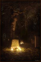Red tree (Kaj Bjurman) Tags: autumn tree night eos sweden stockholm cemetary graves hdr kaj 2007 cs3 photomatix 40d bjurman
