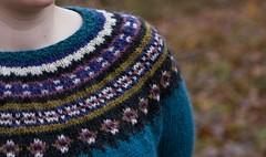 Yoke Closeup (LollyKnit) Tags: november alabama icelandic lopi knitalong litelopi colorwork aftur nakniswemo lopi25 yokedpullover botanicalshades