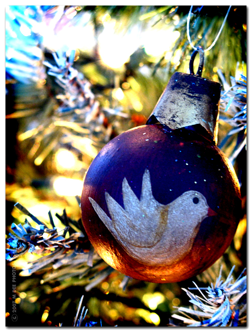 DECEMBER BY MDEE http://www.flickr.com/photos/mnw168/
