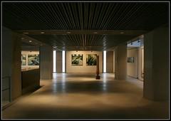 Museo de Bellas Artes I. La Corua (makita ^) Tags: espaa building museum architecture spain arquitectura bellasartes edificio museo soe cuadros corunna lacorua ltytr1