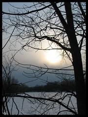 Ciel d'hiver (-VéRo-) Tags: winter sky nature landscape hiver ciel paysage photosafarimtl photoquebec lysdor parcdelavisitation psm190108
