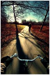 Pursweet (Ibai Acevedo) Tags: blue red sky sun color colour tree sol bike azul copenhagen arbol rojo ride paseo riding cielo bici onboard pursuit paseando persecución diamondclassphotographer
