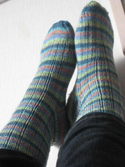 Lichen Ribbed socks