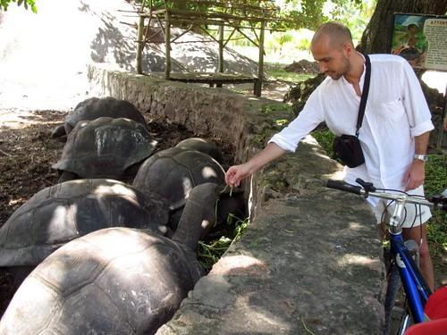 Io con le testuggini giganti delle Seychelles