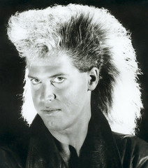 80's Big Hair - Flock of Hairdoos (www.tropicalphotosbylarson.com) Tags: hair hairdo bighair 80s wwwtropicalphotosbylarsoncom