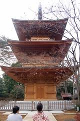Pagoda at Gotokuji (David Z.) Tags: japan pagoda  plumblossom    gotokuji