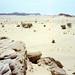 1997 #278-13 Sahara