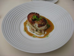 Everest: Casco bay sea scallop, marinated turnips alsace style and pinot gris