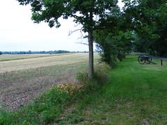 East Cavalry Field, from Cress's Ridge (9) (eringobragh915) Tags: barn corn farm wheat stuart gettysburg civilwar lee hampton gregg custer rummel chambliss eastcavalryfield