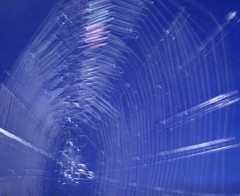 Moonlit spider web