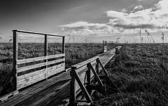 Lavau Sur Loire (44) (CREE PING) Tags: lavausurloire 44 landscape loireatlantique loire nature ngc nantes naoned bretagne breizh bzh canon canon7d creeping ciel chemin 1740mml
