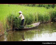 Vietnam Tam Coc 0830 (Hatuey Photographies) Tags: rivière vietnam tamcoc hatueyphotographies ©hatueyphotographies