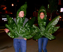 Got weed? (triangle_man) Tags: portrait halloween costume weed pot marijuana cannabis