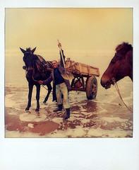 Pose à la Plage (Christian Lagat) Tags: horse man beach polaroid sx70 cheval morocco maroc plage essaouira homme oldstuff marocain
