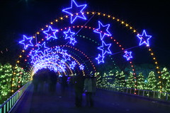 The exit to the Trail of Lights. (NoNo Joe) Tags: christmas blue green austin stars lights texas christmaslights zilkerpark trailoflights