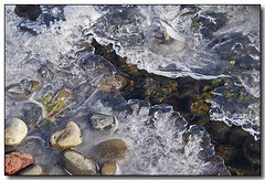 Ice on the Rocks (2) (Roger Lynn) Tags: christmas winter ice creek rocks stream moscow arboretum idaho universityofidaho palouse