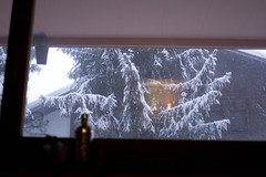 the view where i am sat! (masshuu) Tags: snow tree window switzerland suisse verbier