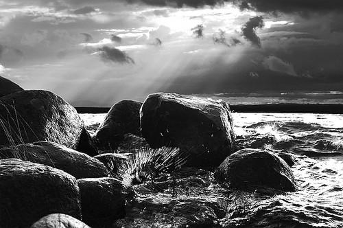 Sunlit stones B&W