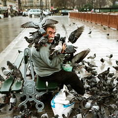 Paris (Peter Gutierrez) Tags: photo europe european la france french français française paris parisien parisiennes parisiens parisienne urban city town street streets rue rues urbain peter gutierrez petergutierrez sidewalk pavement public film bird birds pigeon pigeons homeless man sans abris photograph photography
