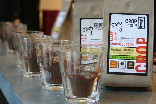 Crop to Cup coffees from Uganda