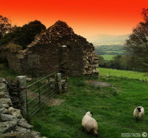 سحر الطبيعة في ايرلندا 2232791656_8dd48843dc.jpg?v=1201781485
