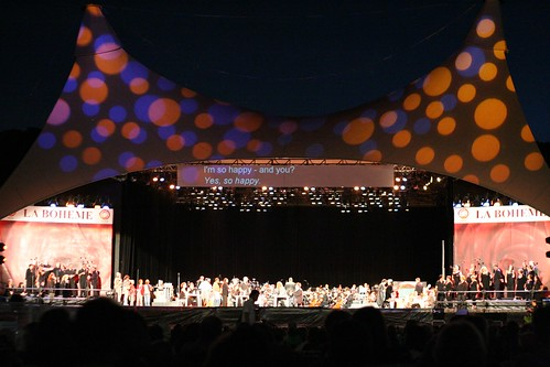 Opera In The Domain