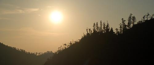 Miyajima 14.jpg