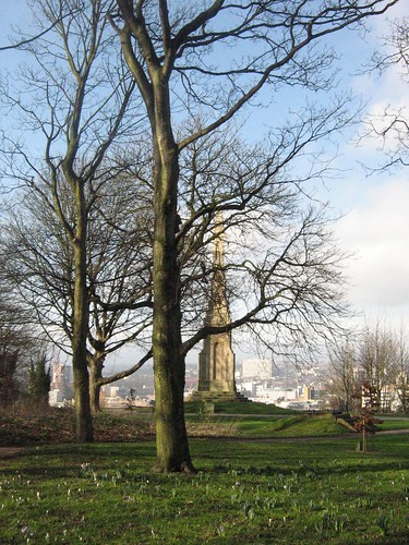 Cholera Monument through the trees