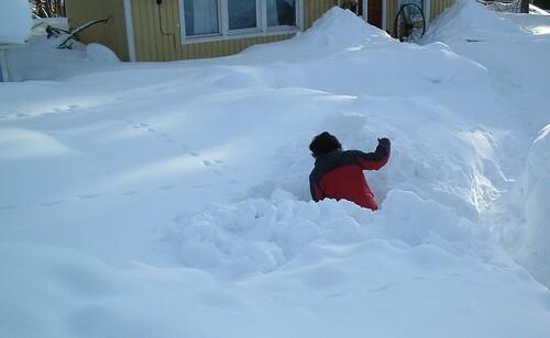 Snöskottning1