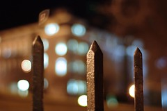 I did it all for the bokeh (Jeremy Sloan) Tags: utata:project=nocturnal2