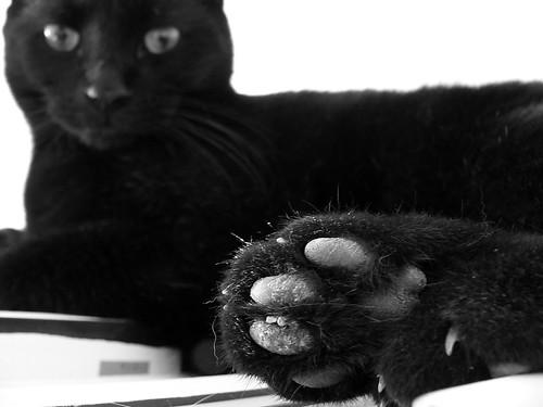 Oskar's dirty foot