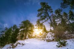 Hiking in Mont Ventoux (84) - France (1183MB) Tags: ventoux montagnes soleil neige hiver contrejour d5300 nikon tokina sunrise hiking randonnée beaumontduventoux provencealpescôtedazur france fr
