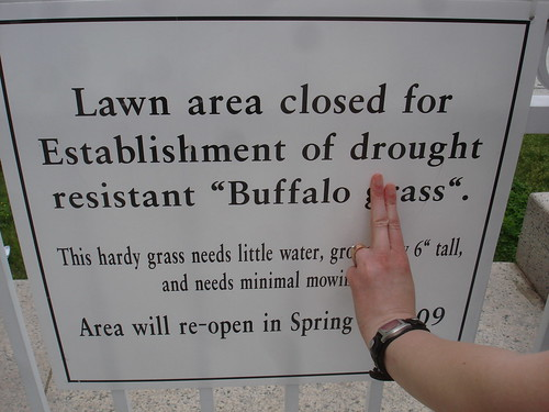 Lawn area closed for Establishment of drought resistant